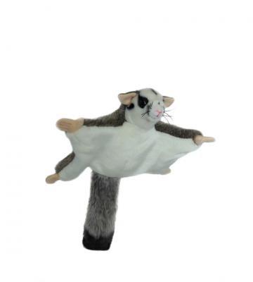 Frisbee the Australian Squirrel Glider