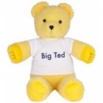 Play School Big Ted Plush 40cm