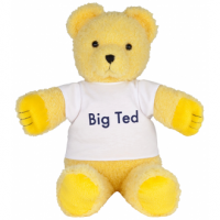 Play School Big Ted Plush 40cm