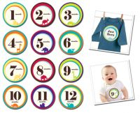 Sticky Bellies Wild One - Milestone Stickers 13 - 24 months