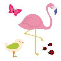 Birds, Bugs & Butterflies