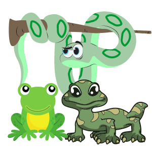 Reptiles & Amphibians- Lizards, Snakes, Turtles and Frogs