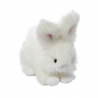 Cottonball Angora Bunny Rabbit