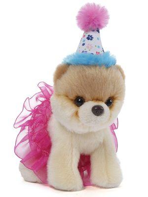 Boo Worlds Cutest Dog - Birthday Tutu