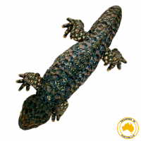 Bobby Bobtail Lizard soft toy