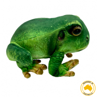 Francis Frog Soft Toy