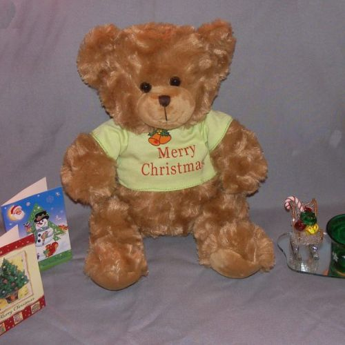 Sean the Christmas Bear