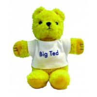 Play School Big Ted Beanie Bear