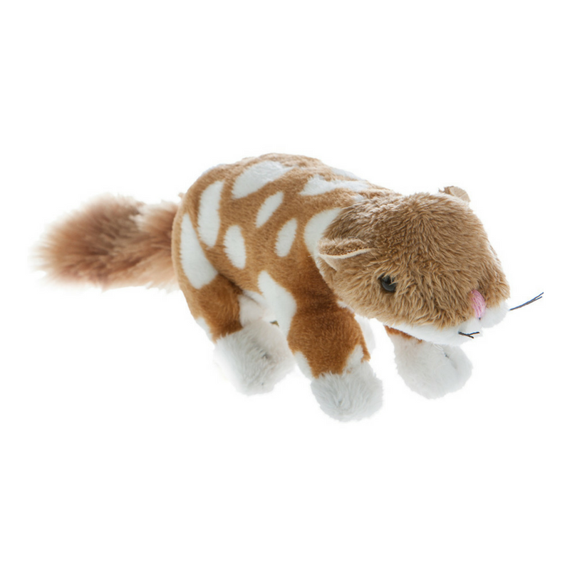 mini quoll toy
